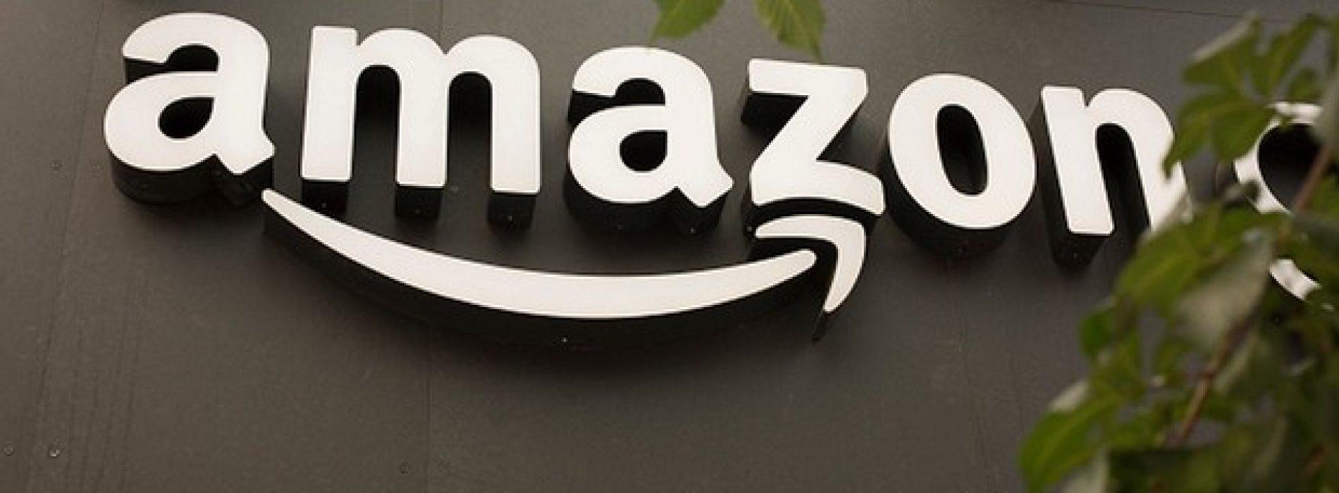 Incursão da Amazon em ração animal não intimida rival alemã